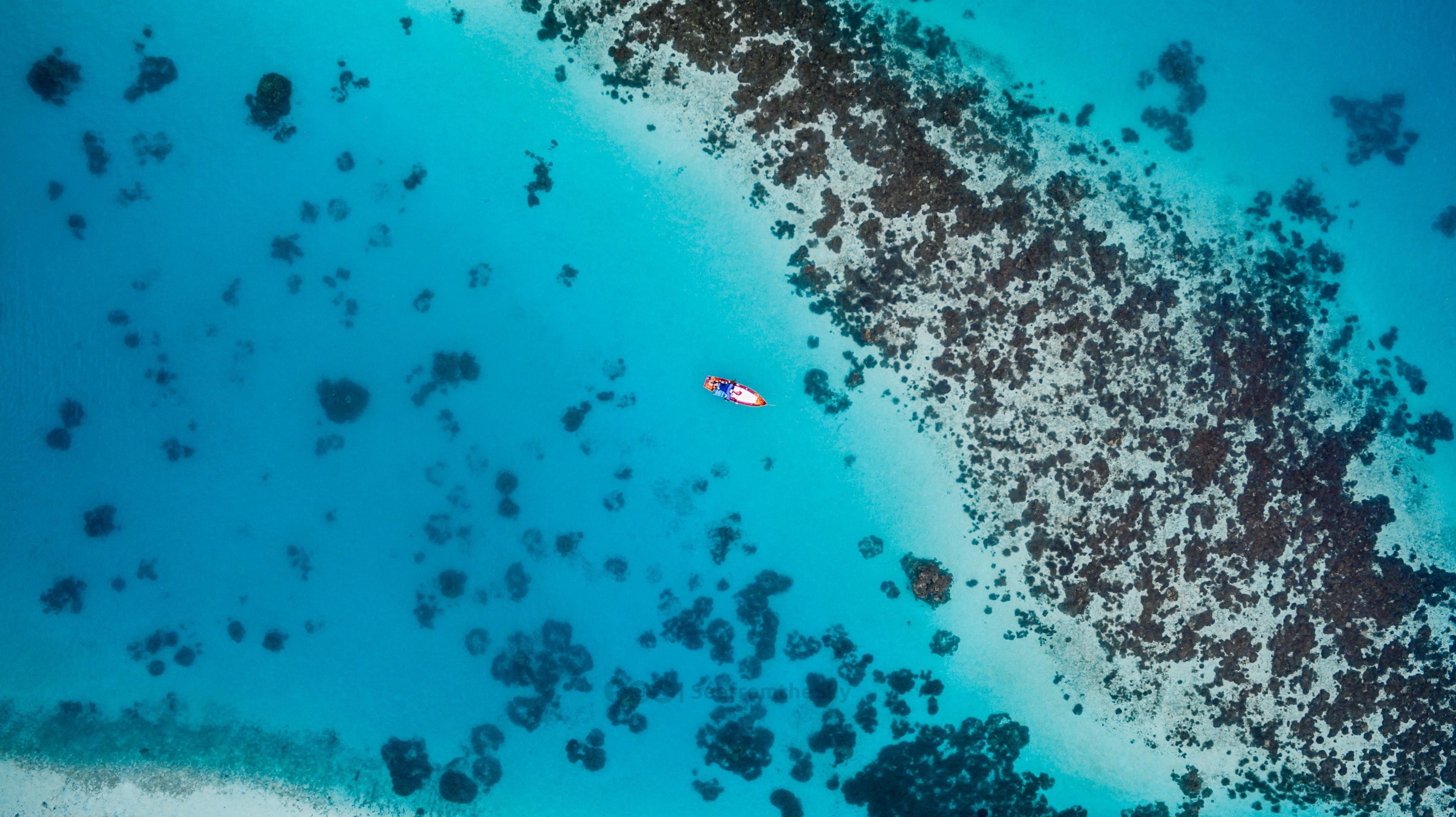 Atolli corallini